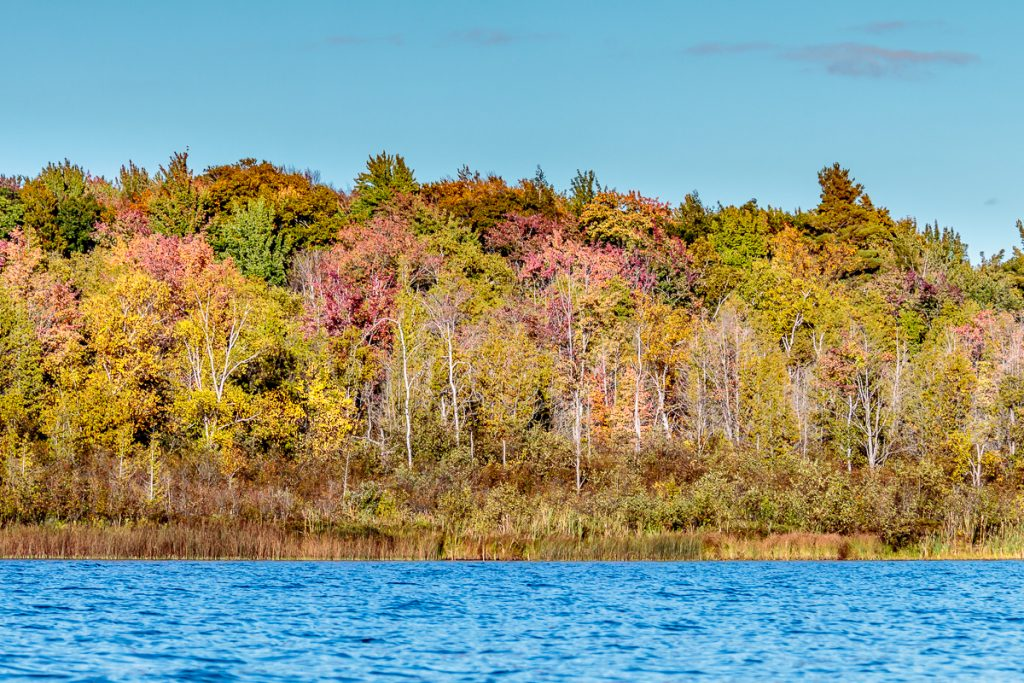 Some color on the south east shore