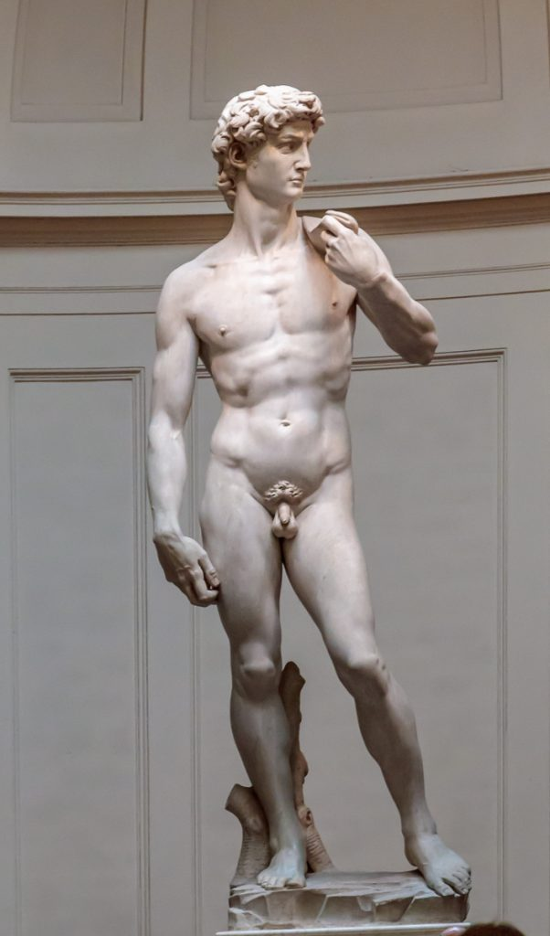 David - Front View