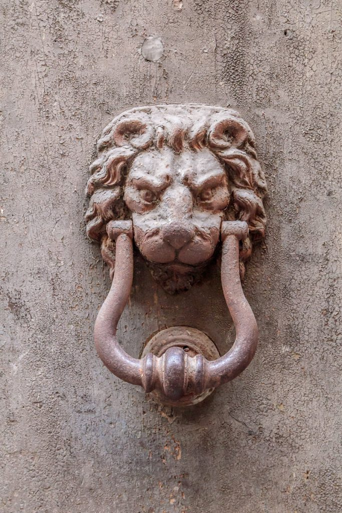 Detail of Lion Knockers