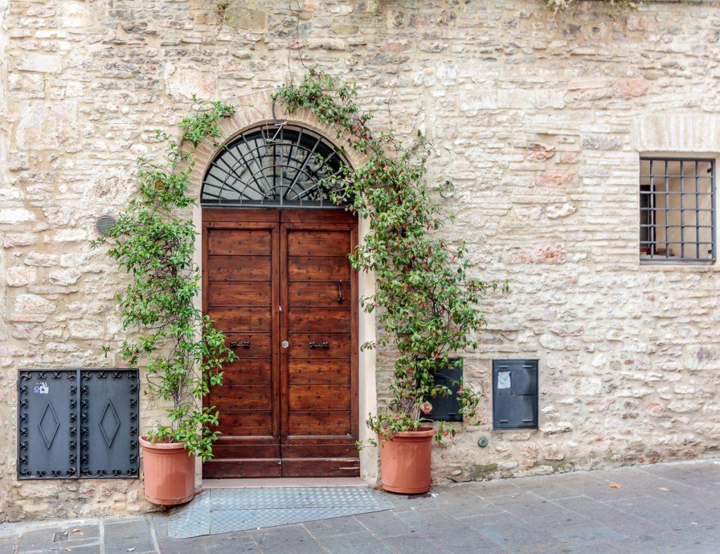 Doorway and Vines