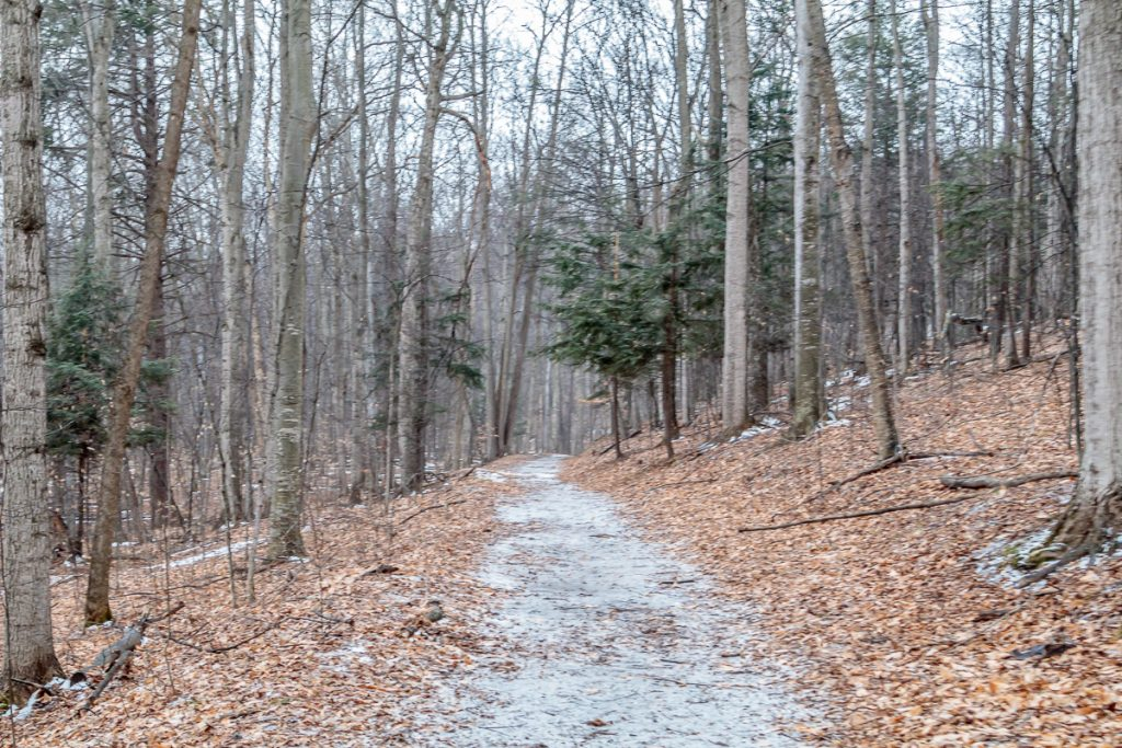 Trail to Farm House