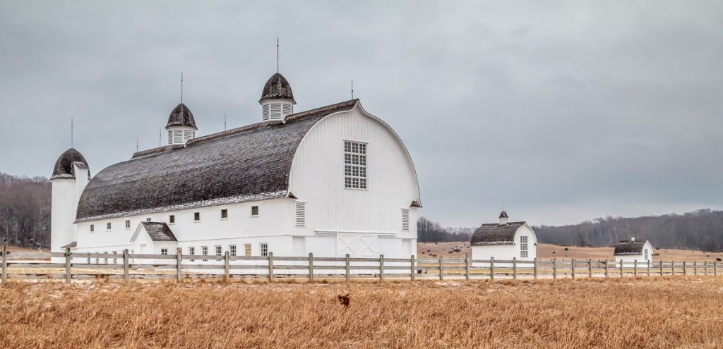 Day Farm Barns